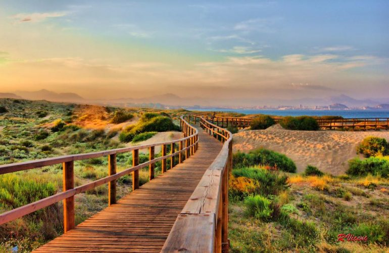 Playa Carabassi Elche