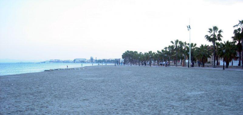 Playa de las palmeras